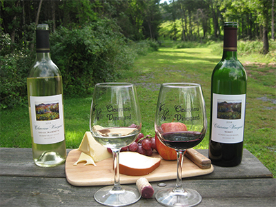 Glasses of Clearview Vineyard Wine
