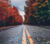 Visit New York in the Fall By Limo